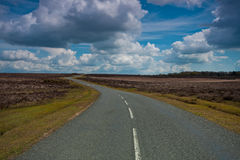 Open road. Winding road through the New Forest national park stock image