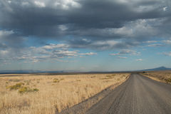 Open road. In the desert, Oregon, Lakeview, Hart Mountain, Taken 09.14, Copyright David Hoffmann Royalty Free Stock Photo