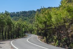 Uphill a curvy, bendy road. Open road through forest on hillside. Open road. Empty road with no traffic in countryside. Curvy, bendy open road through forest on stock photo