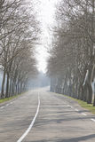 Open Road outside Uzes; Provence. France Royalty Free Stock Image