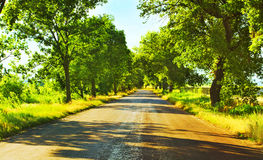 Open road in summer Stock Photography