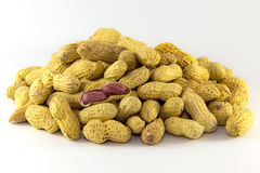 Open Roasted peanuts isolated Royalty Free Stock Photos