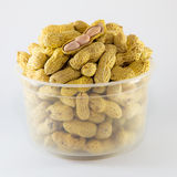Open Roasted peanuts isolated in white plastic bowl Stock Photo