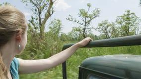 Open roof jeep safari in rainforest, Chitwan national park, Nepal. stock video