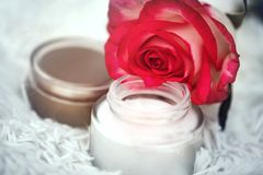 Open round jar with cream and rose. Defocus background with open round jar with cream and rose royalty free stock photography