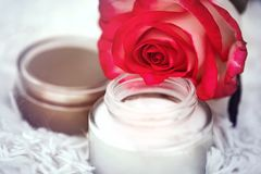 Open round jar with cream and rose. Defocus background with open round jar with cream and rose royalty free stock images