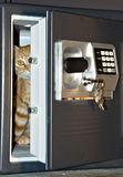 Open safe door with cat inside. Open safe door with keys hanging on front and orange tabby cat inside Royalty Free Stock Photography