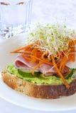 Open Sandwich Royalty Free Stock Image