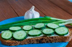 Open sandwich with butter, sliced cucumber, garlic Stock Photo