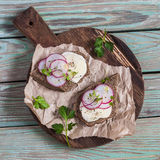 Open sandwich with cheese and radishes on rustic wooden cutting board on a light wooden background. Stock Photography