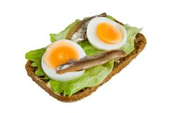 Open sandwich with egg, salad and anchovy. Open sandwich from rye bread, with salad, egg and anchovy.  Isolated on white background Stock Images