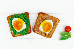 Open sandwich with eggs Stock Images