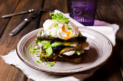 Open sandwich with fish Royalty Free Stock Images