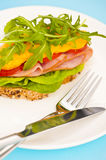 Open sandwich with melted cheese Stock Photo