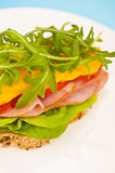 Open sandwich with melted cheese Royalty Free Stock Image