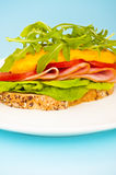 Open sandwich with melted cheese Stock Images