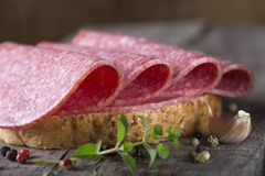 Open sandwich of salami Stock Photography