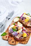 Open sandwich smorrebrod with herring, onion, potato and eggs. Danish open sandwich smorrebrod with herring, onion, potato and eggs Royalty Free Stock Images