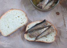 Open sandwich with sprats Royalty Free Stock Image