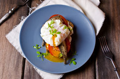 Free Open Sandwich With Fish Royalty Free Stock Image - 72892786