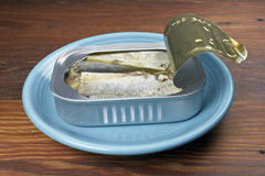 Open sardine can Stock Image