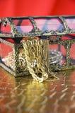 Open schatborst Royalty-vrije Stock Fotografie