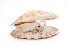 Open seashell with keys Royalty Free Stock Image