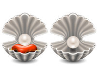 Open seashell with pearl Royalty Free Stock Photography