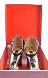Open shoebox Royalty Free Stock Photo