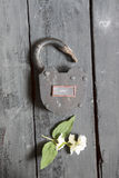Open sign and old padlock Stock Photo