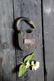 Open sign and old padlock Royalty Free Stock Photography