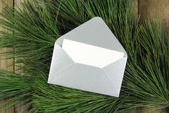 Open silver envelope on fir tree Royalty Free Stock Image