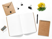 Open sketch book office supplies mimosa flowers Royalty Free Stock Image