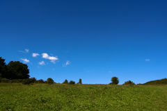Open sky and green Royalty Free Stock Photography