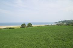 Open space. Open green field looking out to sea Stock Photography