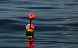 Open spaces. A colorful bouy sits in the crystal blue waters Royalty Free Stock Photo