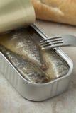 Open tin of sardines Royalty Free Stock Photography