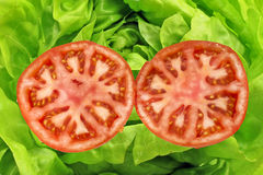 Open tomato with salad. Open tomato with green salad Stock Images