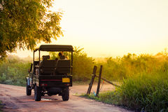 An open topped jeep carries tourists into the national park of U. Dawalawe, Sri Lanka to search for wildlife in the park stock image