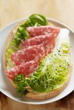 Open tramezzini sandwich with salami, salad and sprouts Stock Photo