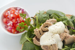 Open Tuna Salad Sandwich Stock Photography