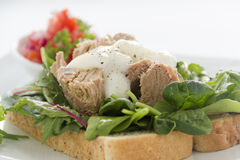 Open Tuna Salad Sandwich Royalty Free Stock Images