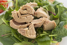 Open Tuna Salad Sandwich Stock Image