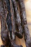 Open vanilla pod on olive board Royalty Free Stock Image