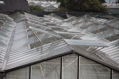 Open vensters van serres in een patroon in ` s-Gravenzande, Westland, Nederland stock foto