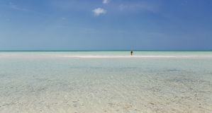 open view of Cuban Cayo Coco island wild beach with turquoise, tranquil ocean and person going far toward horizon line Stock Image