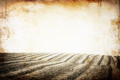 Open view of field. vintage effect sepia toned. Stock Image