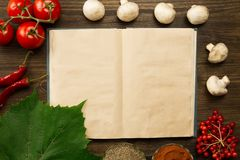 Open vintage book with berries, tomatoes, Chile peppers, spices and grape leaf on wooden background. Healthy vegetarian food. Stock Photos