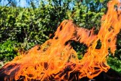 Open vlam, een heldere rode vlam op in openlucht royalty-vrije stock afbeeldingen