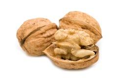 Open walnut Royalty Free Stock Photo